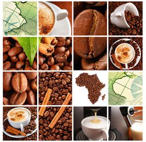 Distributori automatici di caffè ed alimenti in tutta Roma e provincia